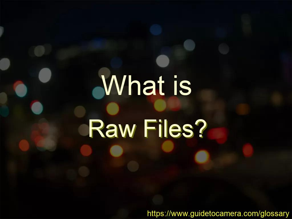 What is Raw Files?